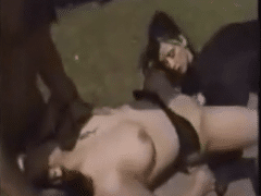 Video Orgy zoophilia Animal Way