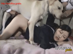 Studying Japanese sex four with dog