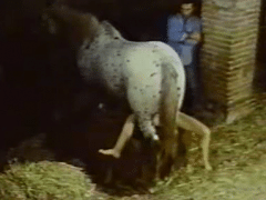 Zoofilia Vintage husband watches horse eat wife